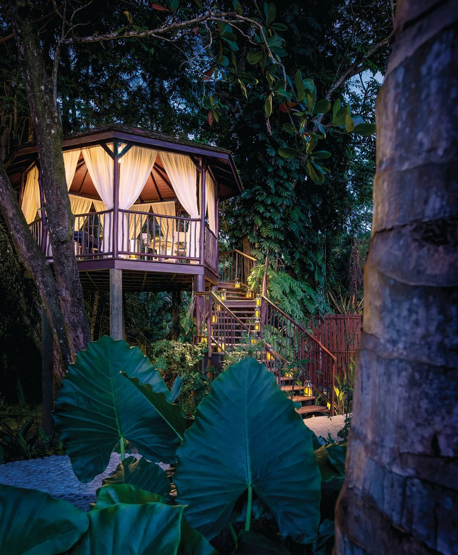 Tucked away within the exotic botanical gardens surrounding the serene Auriga Spa Village, the Tree House provides a private and intimate area for dinner. PHOTO BY ROBERT RECK/COURTESY OF MARIGOT BAY RESORT AND MARINA